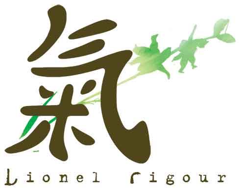 lionelrigour.com