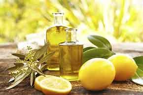 Conseil en huiles essentielles Royan Lionel Rigour